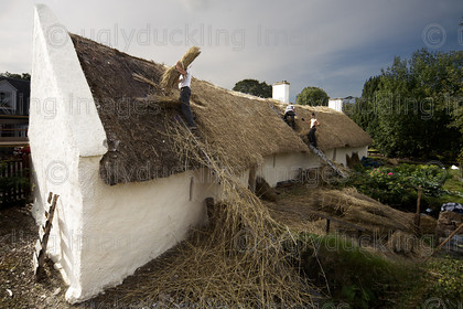 Burns Cottage Thatching 